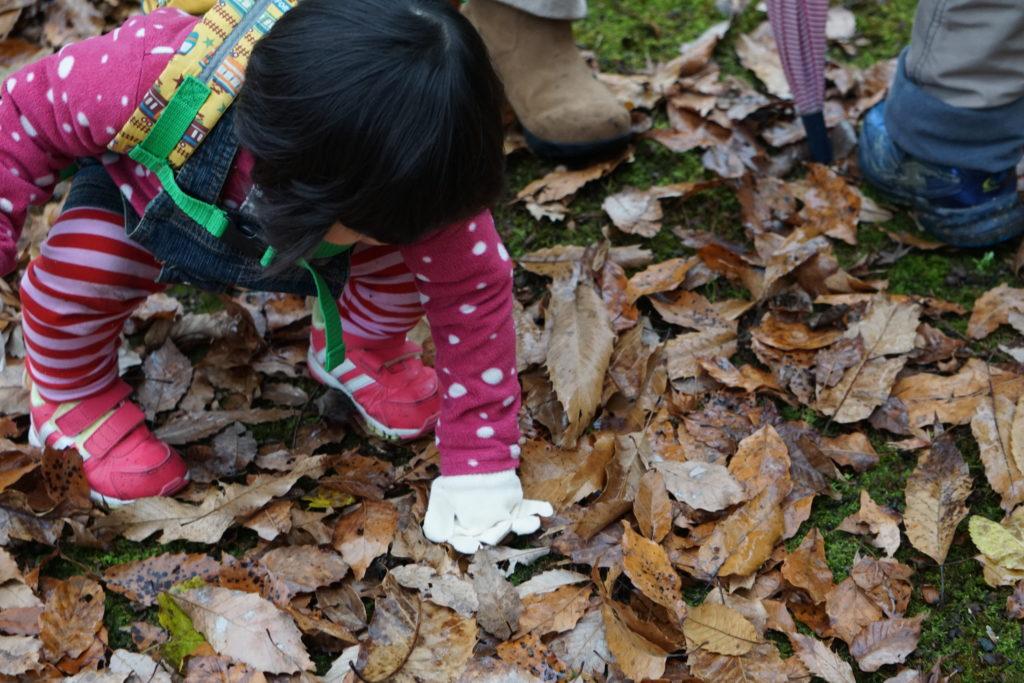 葉っぱを拾う子ども
