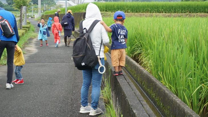 朝のあめさんぽ【森のようちえんちぇすと】2019/8